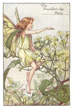 http://www.wellandantiquemaps.co.uk/lg_images/The-Traveller-s-Joy-Fairy.jpg