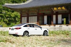 Are you ready to take a nap on the warm day? - 마른 잔디를 베개 삼아 달콤한 낮잠을 자고 싶은 날😌 - #feelsleepy #takeanap #warmday #rest #sweetdream #sunlight #traveling #driving #Changgyeonggung #palace #Korea #car #carsofinstagram #diecast #SONATA #Hyundai