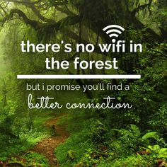 There is no wifi in the forest but I promise you will find a better connection. Hiking Quotes, Travel Quotes, Rock Quotes, Forest Bathing, Forest Garden, Argumentative Essay, Reiki Energy, Nature Tree, Just Breathe
