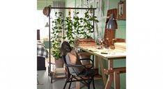 aménager petit studio diviser espace déco Plants, Home, Privacy Screens, Small Space, Plant, Planets