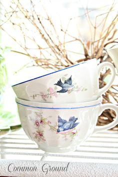 Awe - I love little birdies. These would be so cute for spring and summer time tea.