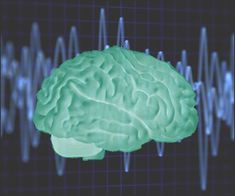 10 Facts About Neurofeedback Therapy and Training Your Brain