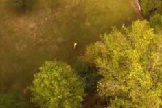 Drone Captures Killer Clown Running Through Forest In Creepy Video - http://viralfeels.com/drone-captures-killer-clown-running-through-forest-in-creepy-video/