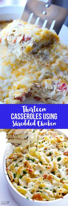 13 CASSEROLES USING SHREDDED CHICKEN. Shredded chicken is my favorite ingredient for quick and simple dinners through the week!