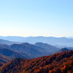 Fall is an amazing time in the Smokies!