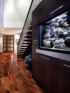 Love the floors! Love the fish tank in the wall! Beautiful!
