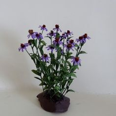 Dollhouse Miniature,Purple Cone Flower in 1 inch scale, by Kiki Bean Miniatures.