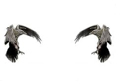 Odin's Ravens Tattoos | History Channel Vikings Tattoos