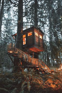 Cabin in the tree Cabins In The Woods, In The Tree, Architecture, Land Scape, The Great Outdoors, Wilderness, Beautiful Places, Destinations, Vacation