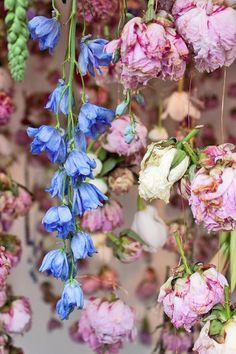 Floral installation