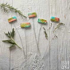Step up your plant-marker game with these fun DIY plant markers for the cutest way to show off your plants! Homemade Fathers Day Gifts, Diy Gifts For Dad, Diy Father's Day Gifts, Easy Diy Gifts, Bamboo Garden, Bamboo Plants, Wooden Garden, Herb Garden, Vegetable Garden