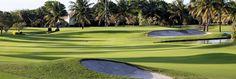 Jacaranda Golf Club   Fort Lauderdale's Premier Golf Courses