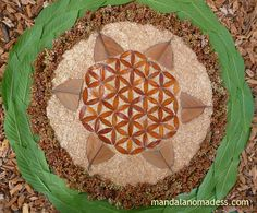 Flower-of-life-11 ~made with dried brown leaf on cattail fuzz with dried dock seed heads, buckeye leaf and inner tree core~~