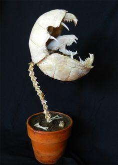 Little Shop of Horrors Skeleton | Tim Prince / Forgotten Boneyards - The Audrii Muscipula, or Audrey.