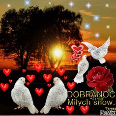 dobranoc Create Animation, Photomontage, Christmas Ornaments, Holiday Decor, Pictures, Heart Pictures, Hearts, Beautiful Images, Deco