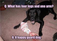 Happy guard puppy!! :-D