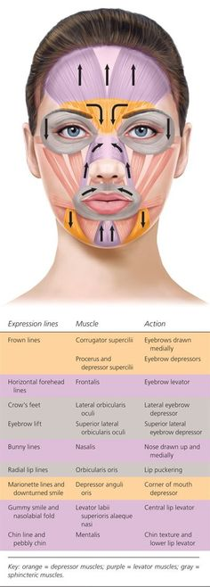 Botulinum Toxin Injection for Facial Wrinkles - is face altering - think- choose. - Botulinum Toxin Injection for Facial Wrinkles – is face altering – think- choose wisely before - Botox Injection Sites, Botox Injections, Botox Fillers, Dermal Fillers, Fillers For Face, Facial Treatment, Skin Treatments, Relleno Facial, Massage Facial