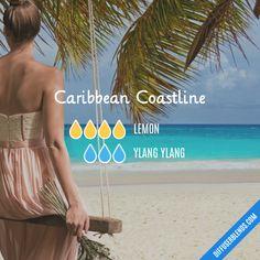 Caribbean Coastline EO Diffuser Blend