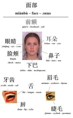 Mandarin Chinese From Scratch: Chinese Vocabulary Mandarin Characters, Chinese Characters, Mandarin Lessons, Learn Mandarin, Chinese Lessons, French Lessons, Spanish Lessons, Chinese Language, German Language