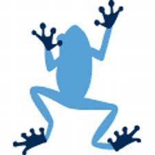 Image result for blue frog