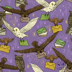 Harry Potter owls...would be my dream pet! <3 <3 <3