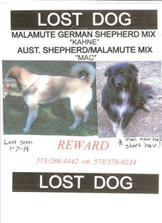 Still missing from Osage Beach MO area. Both microchipped.