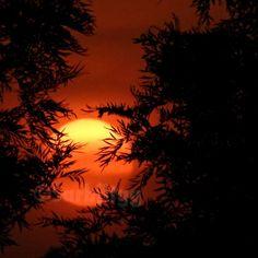 This Morning #Sunrise