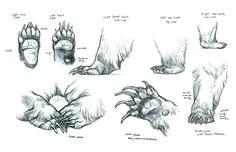 Artigli di orso ✤ || CHARACTER DESIGN REFERENCES | キャラクターデザイン •