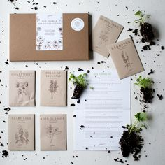 Gift Guide 2016: Seed Collections for Adventurous Gardeners: Gardenista