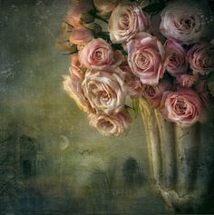 moonlight and roses by Lizzy  Pe  on 500px