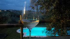 Vino Verdicchio prodotto alla Villa Gemma di sant'Elena country house Morro d'Alba (Ancona)
