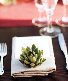 succulent table setting scape wedding event party