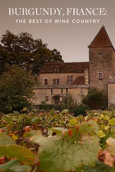 Burgundy is a mix of charming villages, historic wineries and today's culinary elite are all nestled into one petite region for your traveling ease and pleasure.
