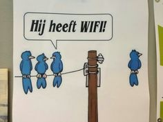 Wifi grappen blijven leuk