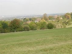 view from epsom downs Planet Earth, Rum, Places Ive Been, Choices, Planets, Golf Courses, Healing, Country Roads, Spaces