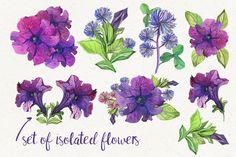 Purple Flowers by marushabelle on @creativemarket