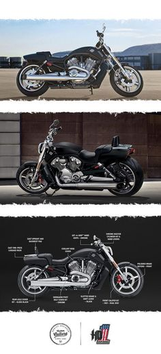 This motorcycle doesn't stutter when it makes its statement. | 2017 Harley-Davidson V-Rod Muscle