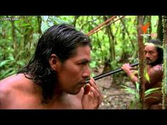 สารคดี ท่องโลกกว้าง โลกธรรมชาติยุคใหม่ ตอน ป่า - YouTube