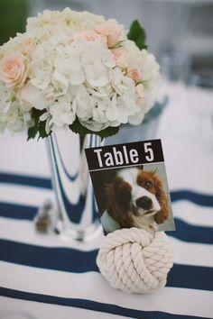Best wedding table numbers dog pictures of ideas Dog Wedding, Wedding Blog, Dream Wedding, Wedding Ideas, Wedding Stuff, Wedding Flowers, Wedding Dresses, Wedding Favor Table, Wedding Table Numbers