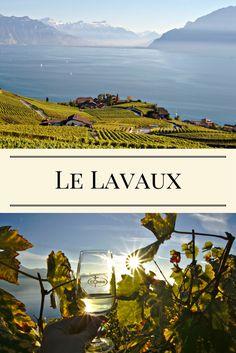 Balade dans le Lavaux en Suisse. Classées au patrimoine mondial de l'UNESCO, ces vignes qui surplombent le lac Léman sont un cadre de rêve pour une petite randonnée facile en Suisse. Itinéraire et infos pratiques sont dans l'article ;)