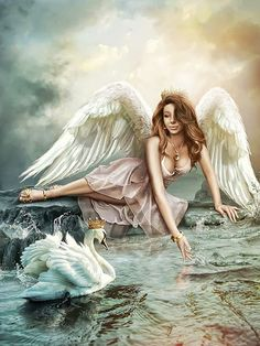Angel and swan