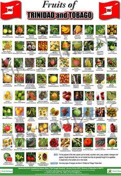 Fruits of Trinidad & Tobago