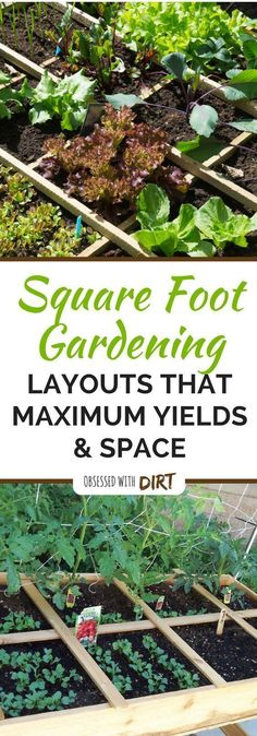 Learn everything you need to know about square foot gardening. Plus get free layouts to the best square foot #gardening plans for high yields in small gardens. This is great for any gardener who is just starting a beginner vegetable garden and will help yo