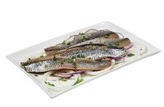Schmaltz Herring Fillets from Jewish Food, Jewish Recipes, Challah, Holiday Traditions, Holiday Recipes, Wines, Entrees, Foods, Meals