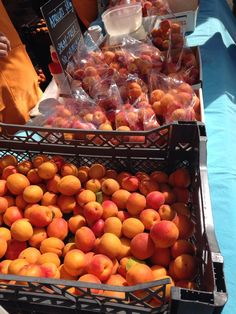 Spray free apricots at Harvest Market today #growersandmakers #tassievore. credit goes to Harvest Launceston https://twitter.com/HarvestLst