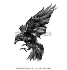 Painted Raven On White Background Stock Illustration 672819922 Kunst Tattoos, Body Art Tattoos, Sleeve Tattoos, Fox Tattoos, Tree Tattoos, Hand Tattoos, Bird Tattoos Arm, Stomach Tattoos, Animal Tattoos
