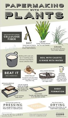 If you ask someonewhat paper is made of, most would immediately saytrees. However, withthe hand papermaking process, you can use other plant fibers to make an incredible range of handmade papers... Illustrated Infographic, paperslurry.com, posted on August 20, 2014