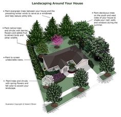 landscape plans Strategically planting deciduous trees near south, east, and west-facing windows will provide needed shade in the summer, but let in the suns during the winter. Landscaping Around House, Landscaping Trees, Privacy Landscaping, Front Yard Landscaping, Acreage Landscaping, Backyard Trees, Outdoor Landscaping, Arborvitae Landscaping, Landscaping Borders