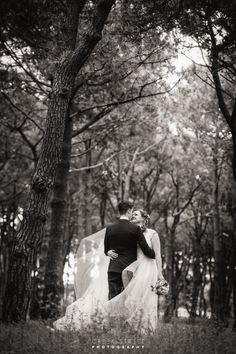 Wedding at Centennial Parklands Pine Grove Sydney