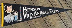 Vintage Benson Wild Animal Farm, Hudson, N.Y. felt pennant | eBay